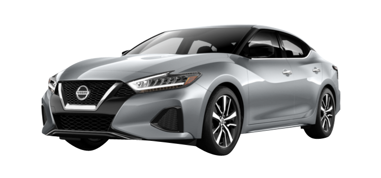 2019 Nissan Maxima image